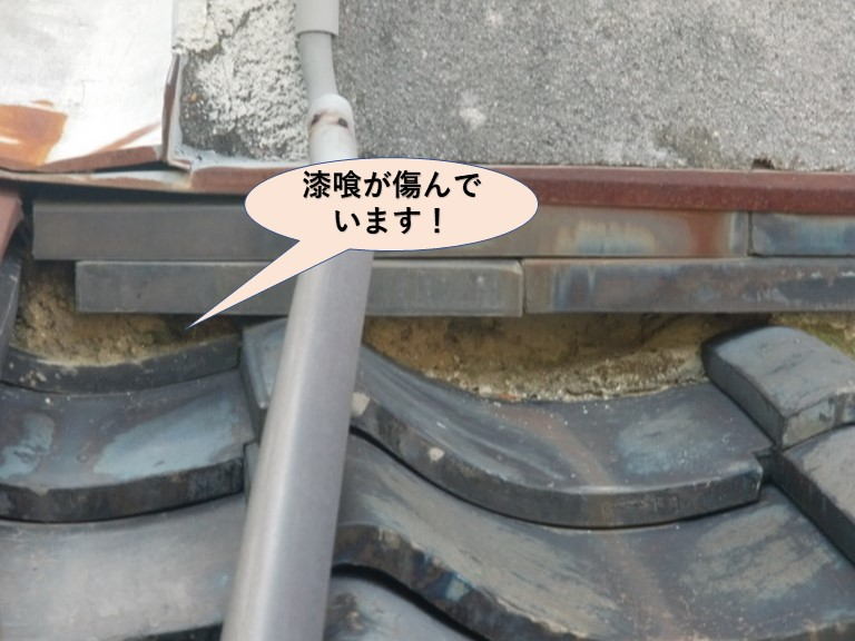 岸和田市中町のトイレ真上の下屋調査