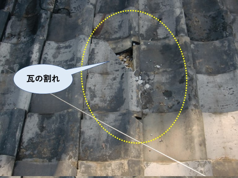 岸和田市の瓦の割れ