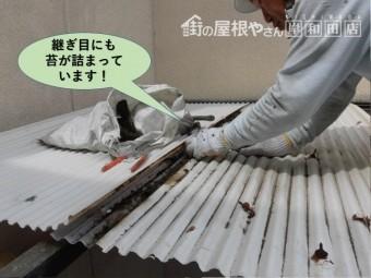 岸和田市の波板の継ぎ目にも苔が詰まっています!