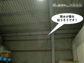 岸和田市の倉庫で雨水が壁を伝うそうです