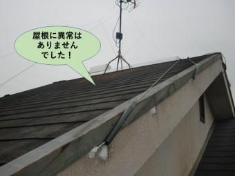 熊取町の屋根に異常はありませんでした