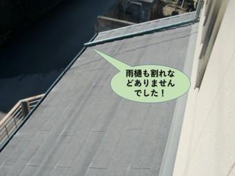 阪南市の雨樋も割れなどはありませんでした
