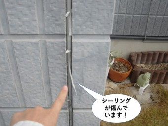 泉大津市の外壁のシーリングが傷んでいます