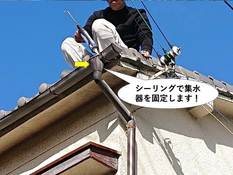 泉佐野市の集水器をシーリングで固定