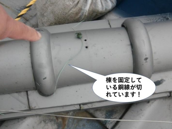 熊取町の棟を固定している銅線が切れています