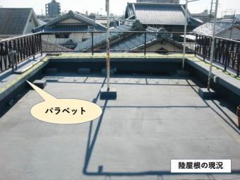 岸和田市の陸屋根の現況