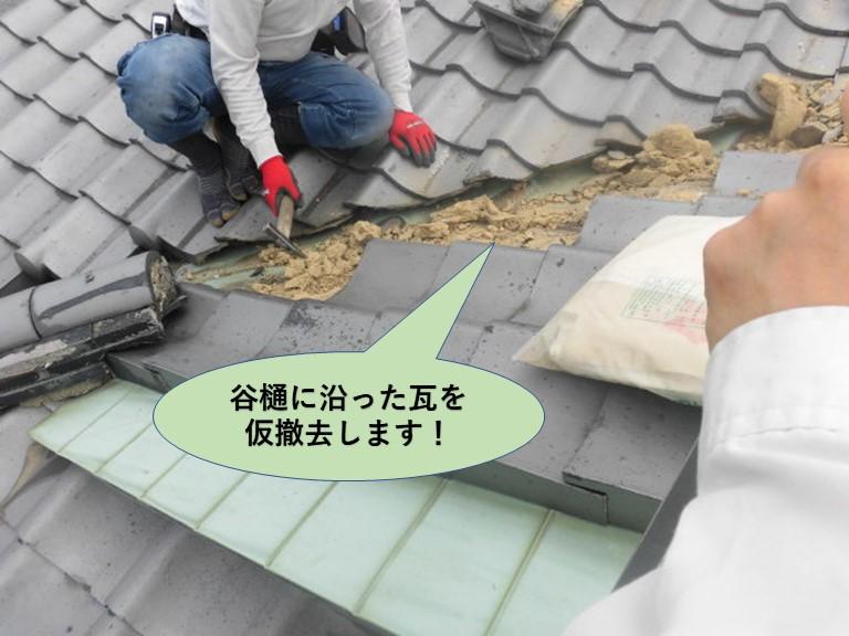 岸和田市の谷樋に沿った瓦を仮撤去します