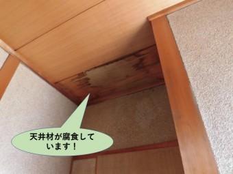 岸和田市の玄関の天井材が腐食しています