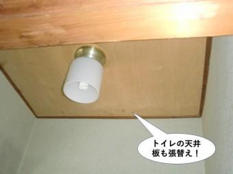 岸和田市のトイレの天井板も張替