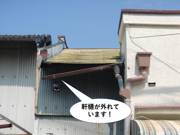熊取町の軒樋が外れています