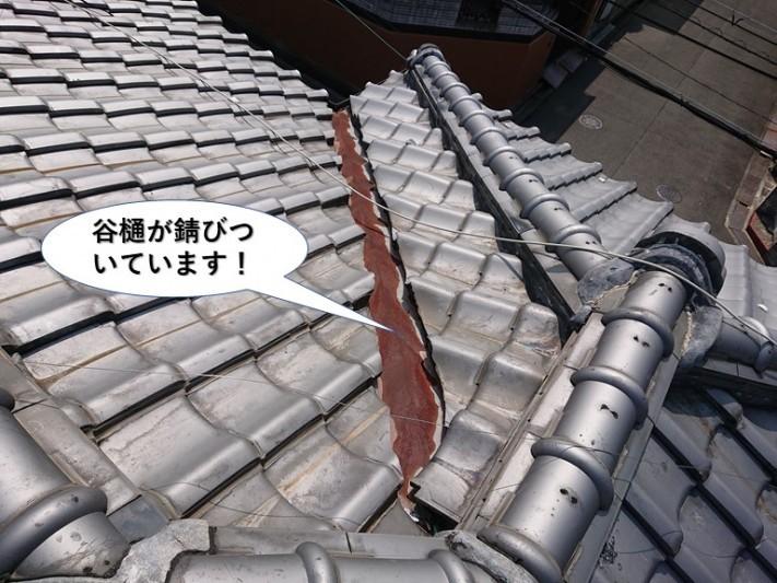泉佐野市の谷樋が錆びついています