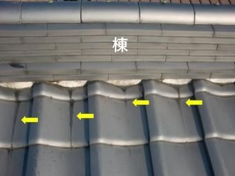 貝塚市の棟の内側に雨水が入った形跡があります
