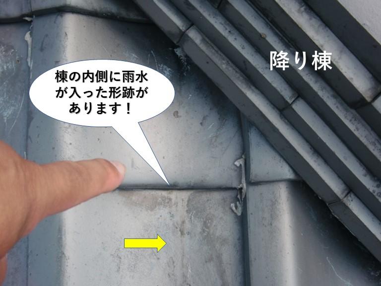 岸和田市の棟の内側に雨水が入った形跡があります