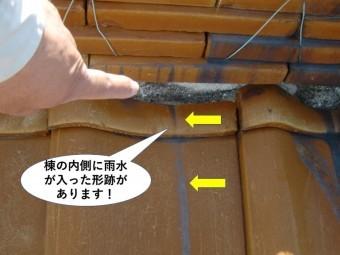 熊取町の棟の内側に雨水が入った形跡があります