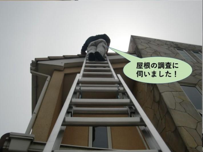 泉佐野市の屋根の調査に伺いました