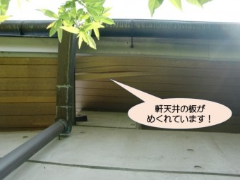 岸和田市土生町の軒天井板のめくれ