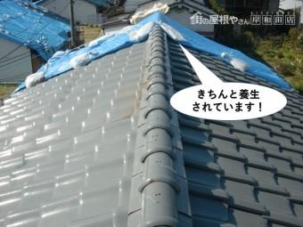 忠岡町の屋根をきちんと養生されています