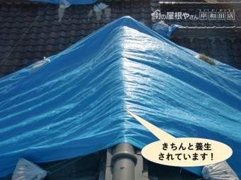 泉大津市の屋根をきちんと養生されています