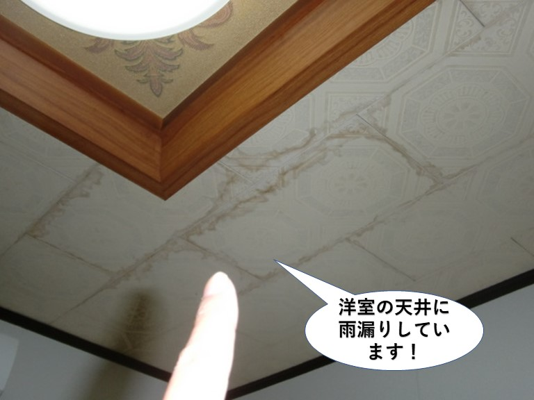 泉大津市の洋室の天井に雨漏りしています