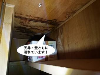 和泉市の天井と壁が塗れています