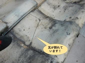 貝塚市の瓦が割れています