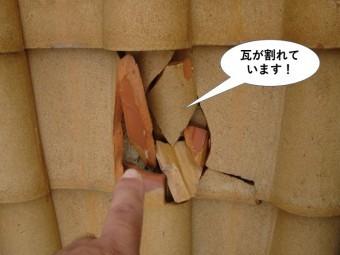 和泉市の瓦が割れています