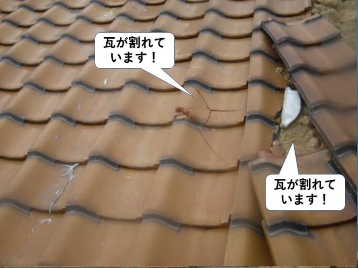 泉大津市の屋根の瓦が割れています