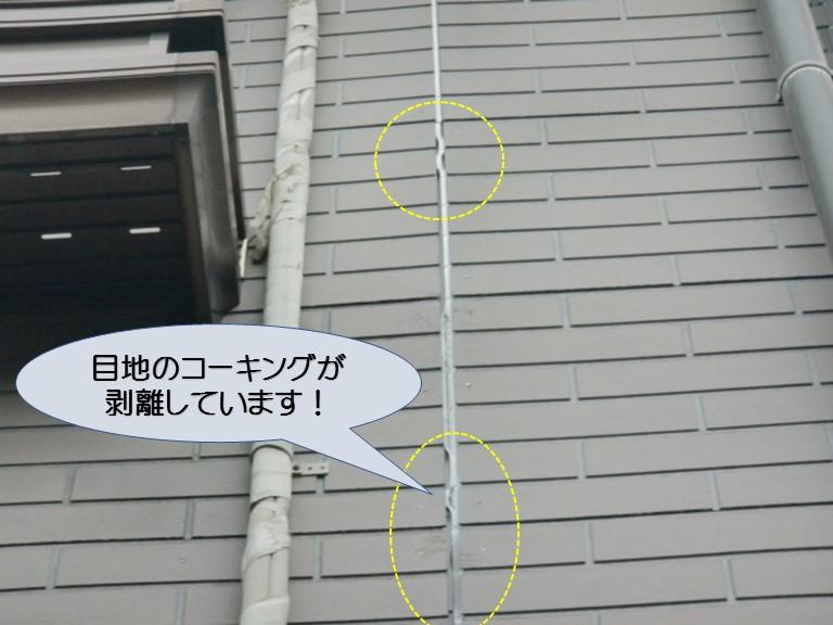 和泉市のサイディングの目地剥離