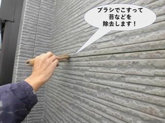 貝塚市の外壁横目地をブラシでこすって苔などを除去します!