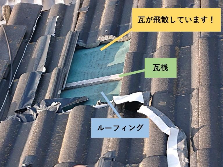 和泉市の瓦が飛散