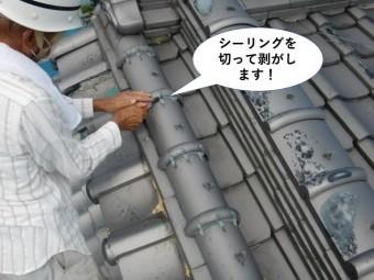 岸和田市の屋根のシーリングを切って剥がします
