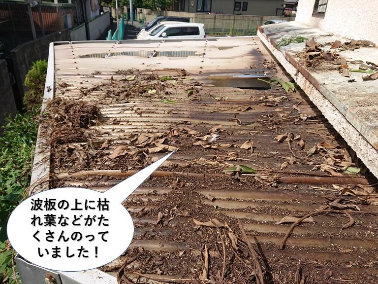 岸和田市の波板の上に枯れ葉などがたくさん載っていました
