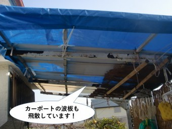 忠岡町のカーポートの波板も飛散しています