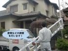和泉市の屋根などの調査