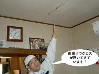 岸和田市の1階のお部屋の天井が雨漏りでクロスが浮いてきています!