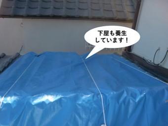 和泉市の下屋も養生しています