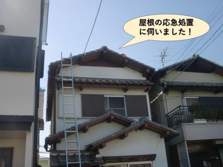 和泉市の屋根の応急処置