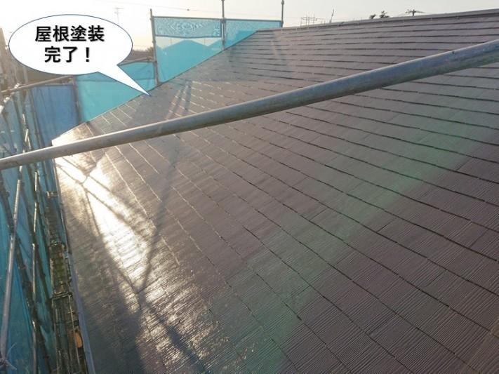 和泉市の屋根塗装完了