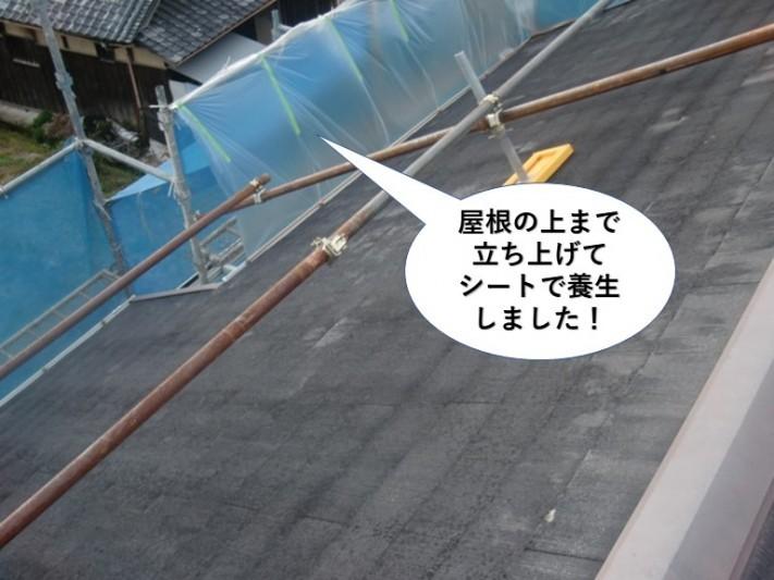 泉南市の屋根の上まで養生しました