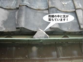熊取町の雨樋の中に瓦が落ちています