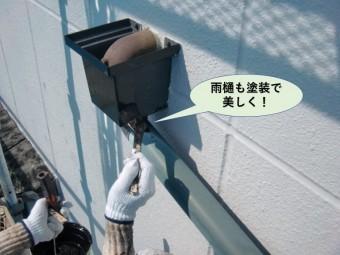 岸和田市の雨樋も塗装で美しく