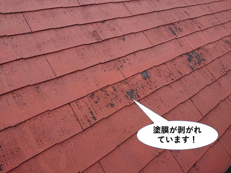 泉佐野市の屋根の塗膜が剥がれています
