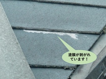 和泉市の屋根の塗膜が剥がれています