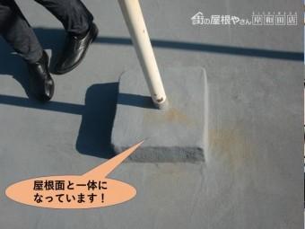 岸和田市の物干し台が屋根面と一体になっています!