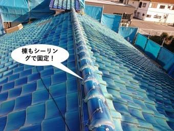 和泉市の棟もシーリングで固定