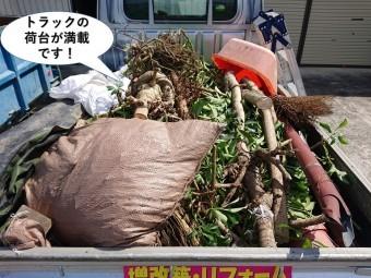 岸和田市で植木を伐採しトラックの荷台が満載です