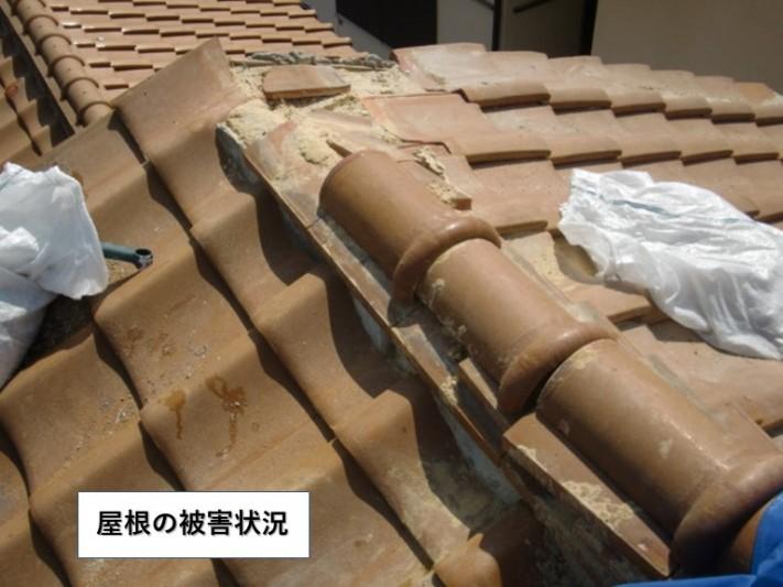 和泉市の屋根の被害状況