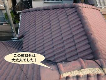 忠岡町の屋根の被害状況