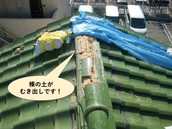岸和田市の棟の土がむき出しです!