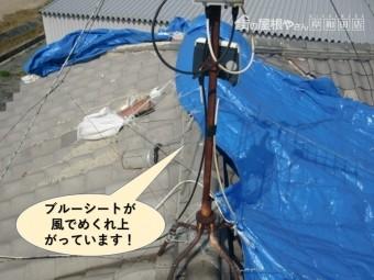 岸和田市の屋根のブルーシートが風でめくれ上がっています